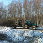 Metsa väljavedu 1